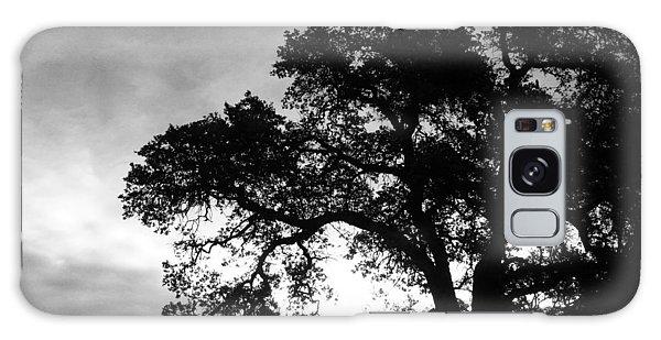 Valley Oak Galaxy Case by Jennifer Muller