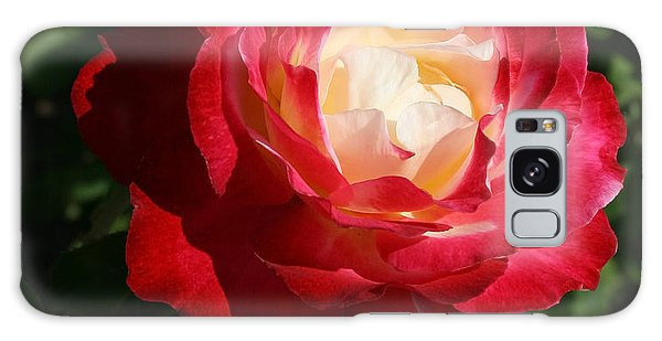 Variegated Rose Galaxy Case