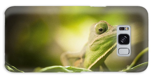 Veiled Chameleon Is Watching You Galaxy Case