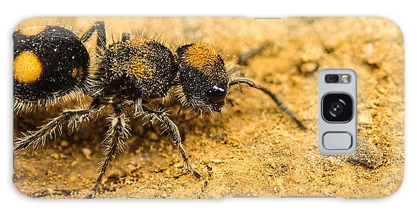 Velvet Ant Galaxy Case