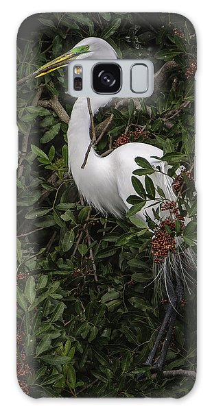 Venice Rookery Egret Galaxy Case