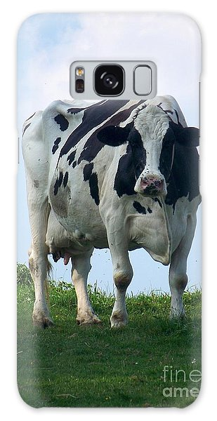 Vermont Dairy Cow Galaxy Case by Eunice Miller