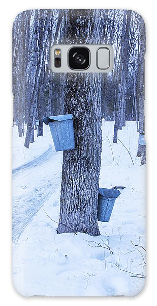 Vermont Maple Syrup Buckets Galaxy Case