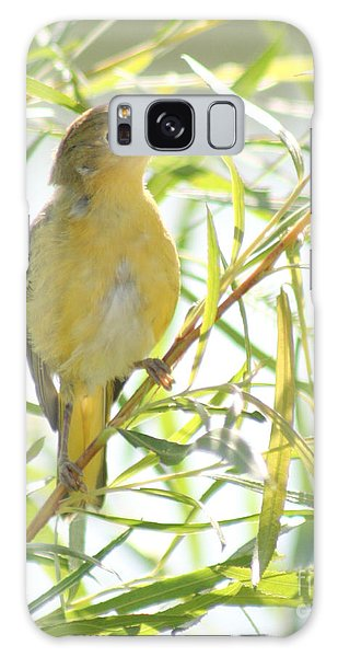 Very Yellow Warbler Galaxy Case