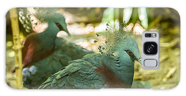 Victoria Crowned Pigeon Galaxy Case