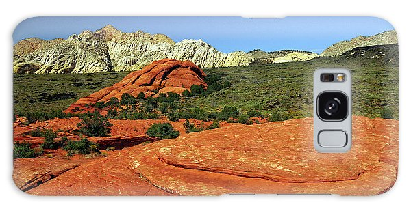 Desert Flora Galaxy Case - View From Petrified Dunes, Snow Canyon by Michel Hersen