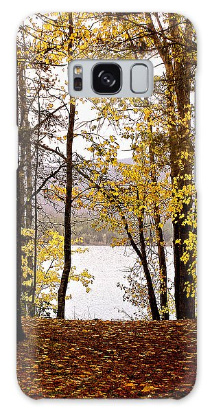 View Of  Lake Mcdonald Galaxy Case