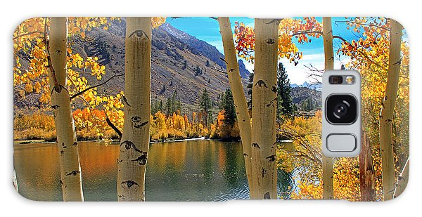 View Through The Aspens Galaxy Case by Donna Kennedy
