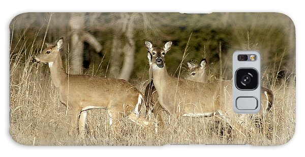 Vigilant White-tailed Deer Galaxy Case