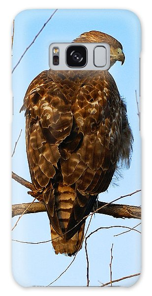 Vigilant Red-tailed Hawk  Galaxy Case