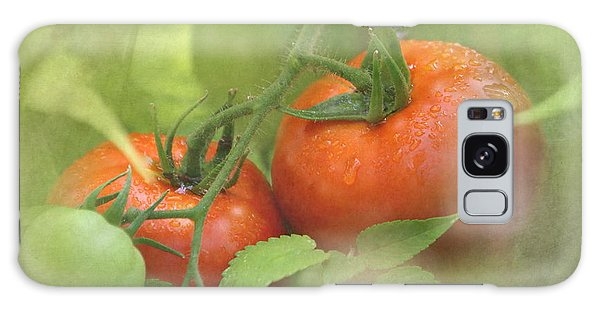 Vine Ripened Tomatoes Galaxy Case