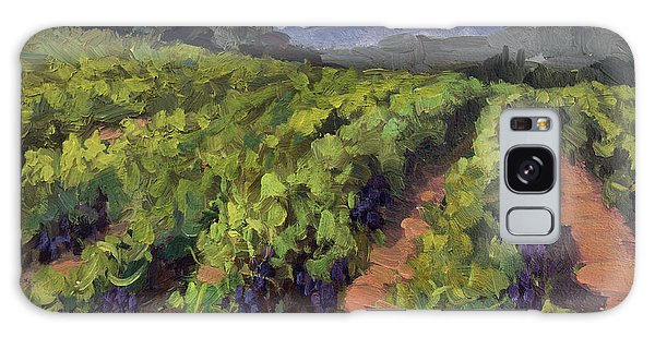 Vineyard At Dentelles Galaxy Case