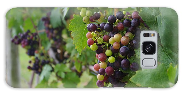 Vineyard Colors Galaxy Case by Greg Graham