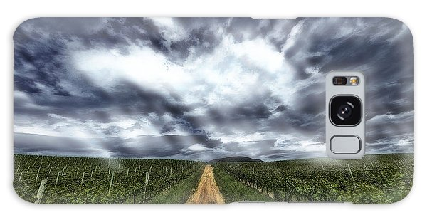 Vineyard Walk Galaxy Case
