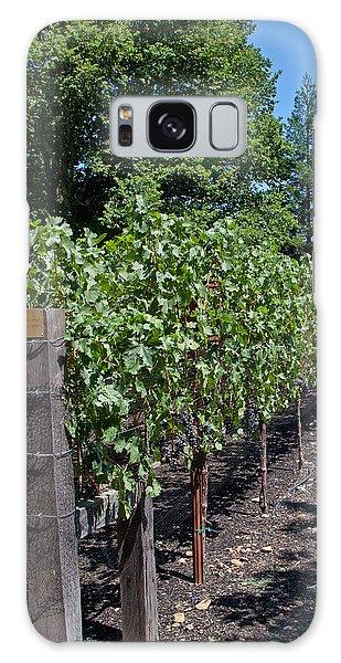 Vineyards Galaxy Case