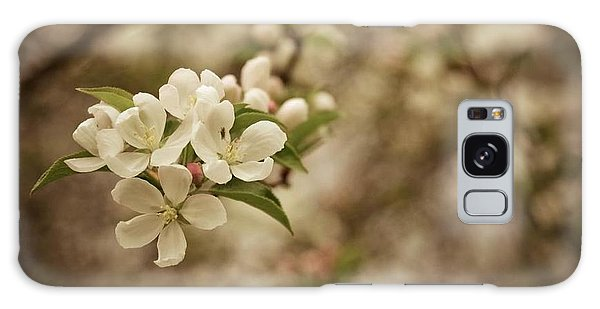 Vintage Crabapple Blossom Galaxy Case