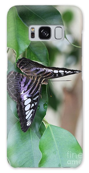 Violet Clipper Butterfly Galaxy Case
