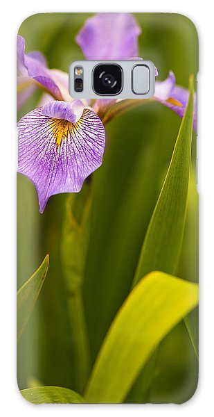 Violet Iris Galaxy Case by Phyllis Peterson