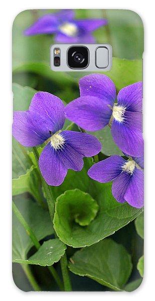 Violet Trio Galaxy Case