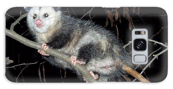 Virginia Opossum Galaxy Case by William Tanneberger