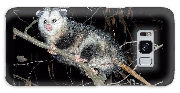 Virginia Opossum Galaxy Case