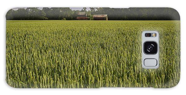Virginia Wheat Field Galaxy Case