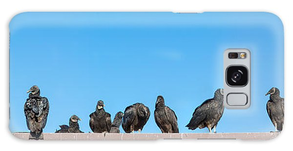 Anhinga Galaxy S8 Case - Vultures On Anhinga Trail, Everglades by Panoramic Images