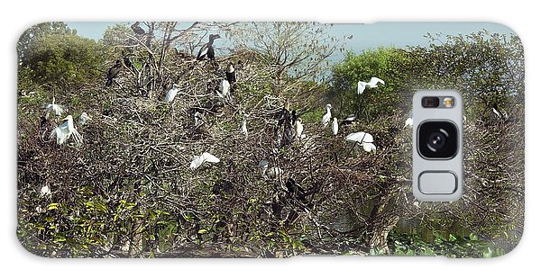 Wading Birds Roosting In A Tree Galaxy Case