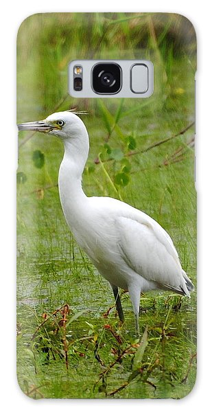 Wading Heron Galaxy Case by Dan Williams