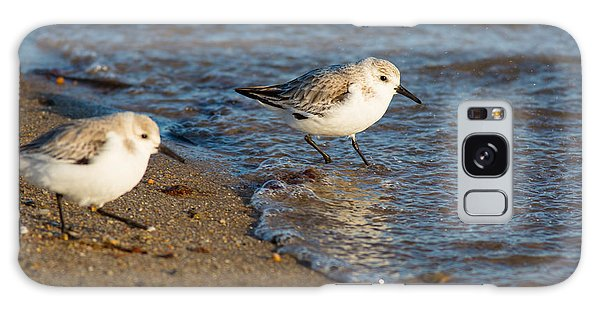 Wading Sanderlings Galaxy Case
