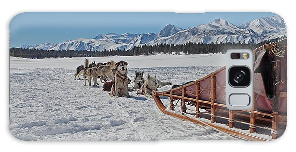 Waiting Sled Dogs  Galaxy Case by Duncan Selby