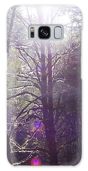 Walking In The Woods Galaxy Case