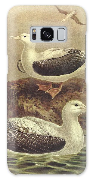 Albatross Galaxy Case - Wandering Albatross by Dreyer Wildlife Print Collections