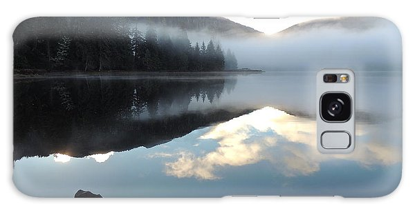 Ward Lake Galaxy Case