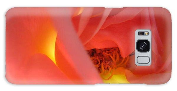 Warm Glow Pink Rose 2 Galaxy Case