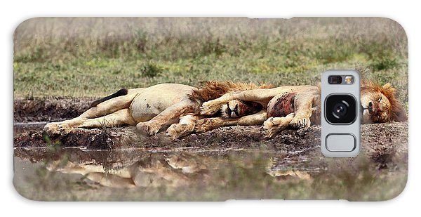 Lion Galaxy Case - Warriors At Rest by Arik Kaneh