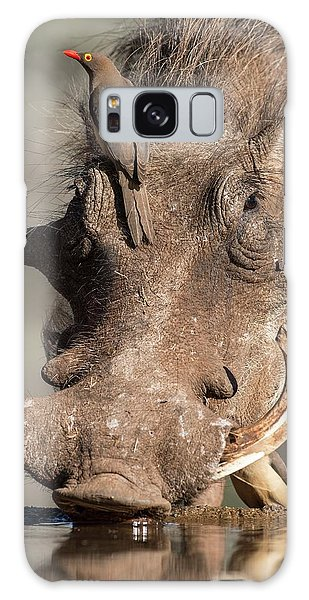 Behaviour Galaxy Case - Warthog With Ox-pecker At A Watering Hole by Tony Camacho