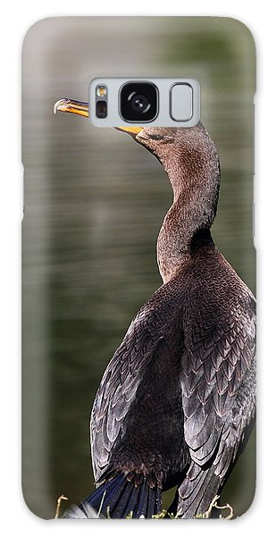 Wary Cormorant Galaxy Case