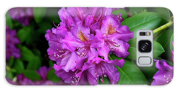 Washington Coastal Rhododendron Galaxy Case