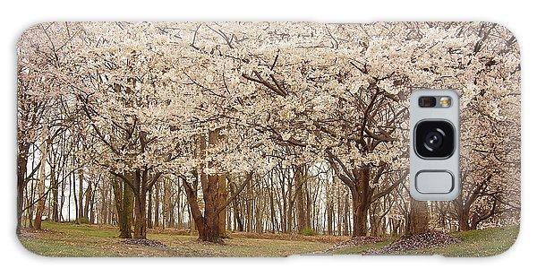 Washington Dc Cherry Blossoms Galaxy Case