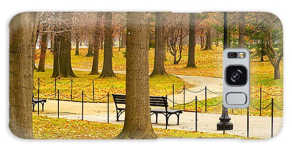Washington Dc's Memorial Parks In The Winter Galaxy Case by MaryJane Armstrong