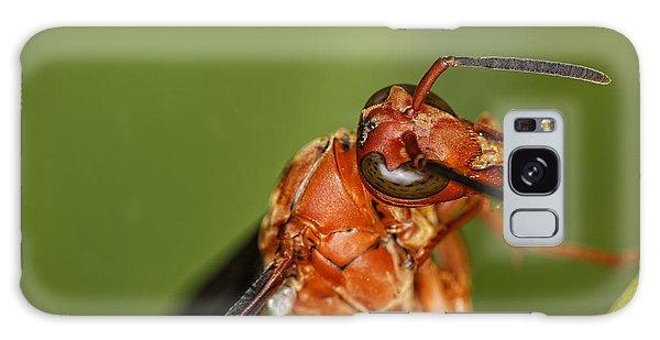 Wasp 1 Galaxy Case
