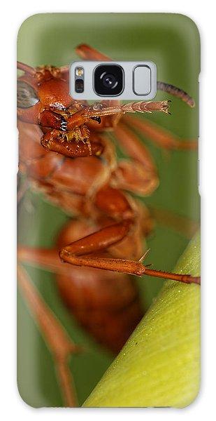 Wasp 3 Galaxy Case