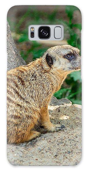 Meerkat Galaxy S8 Case - Watchful Meerkat Vertical by Jon Woodhams