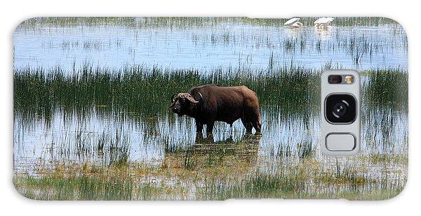 Water Buffalo At Lake Nakuru Galaxy Case