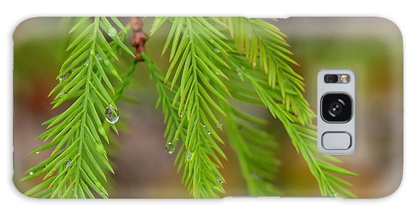 Water Droplets Cypress Foliage Galaxy Case