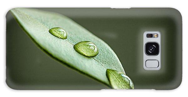 Leaf Galaxy Case - Water Drops On Green Leaf by Elena Elisseeva