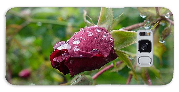 Rain Drops On Rose Galaxy Case