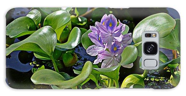 Water Hyacinth Galaxy Case