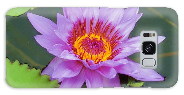 Water Lilies 005 Galaxy Case